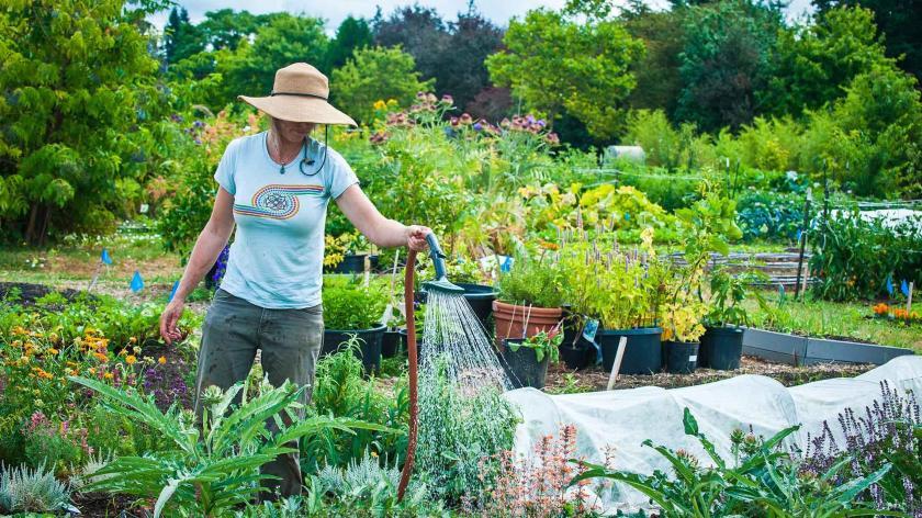pace-osu-master-gardener